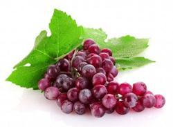 10 loại quả có công dụng phòng chữa bệnh rất hữu ích