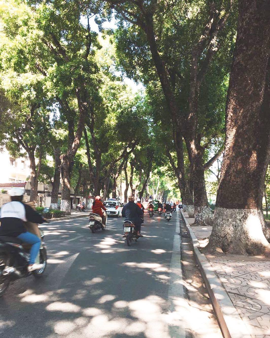 Những con đường Hà Nội níu giữ bất cứ ai đi qua vì quá đẹp