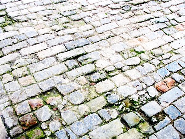 Đường lát gạch hoa chanh trong Hoàng thành