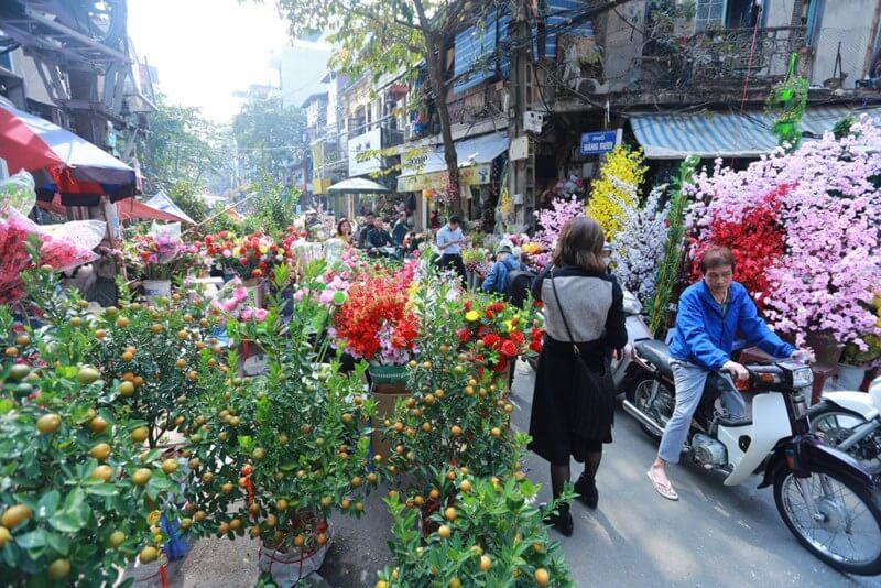 Những chợ hoa Tết Hà Nội nổi tiếng nhất