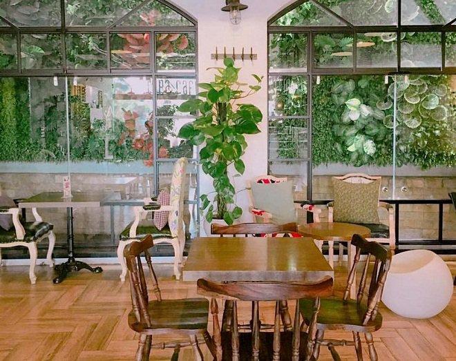Green Coffee: Đúng như tên gọi, quán có cây xanh ở khắp nơi, từ lối đi, lan can cầu thang đến ô cửa sổ. Những chậu cây còn được bố trí trên những giá sách treo tường. Những chiếc bình thủy tinh cũng được tận dụng để trồng cây. Chủ quán kết hợp khéo léo giữa ánh sáng, màu sắc, bàn ghế và cây xanh, tạo nên không gian vừa hiện đại vừa gần gũi. Địa chỉ: số 8 ngõ Hàng Cháo, quận Đống Đa. Ảnh: Green Coffee.