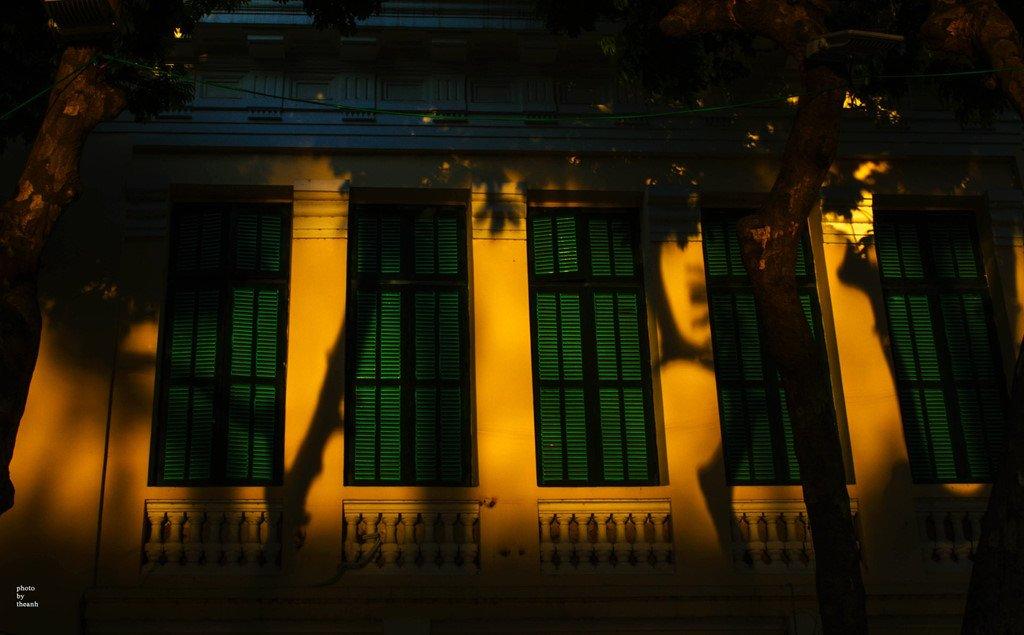 Khi hoàng hôn buông xuống, ánh nắng xuyên qua những tán lá, chiếu rọi vàng rực cả một góc đường. Những vệt nắng vàng cuối ngày tô điểm thêm vào nét cổ kính của phố phường.