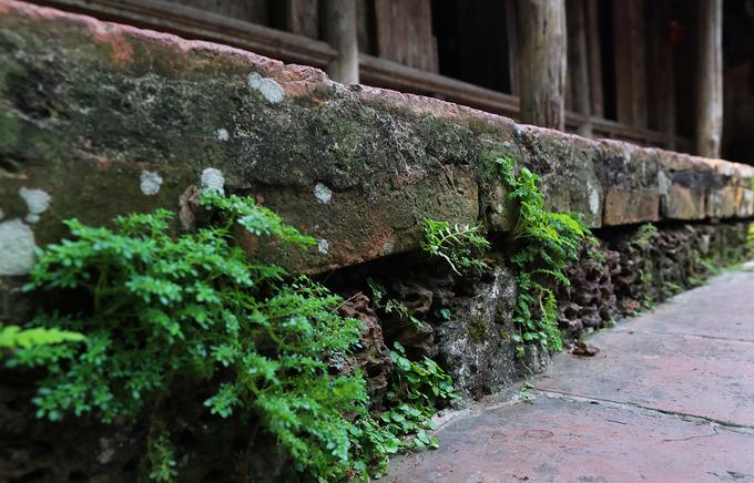 Địa chất làng cổ Đường Lâm gắn liền với đá ong, phần móng nhà cũng được sử dụng chất liệu này.