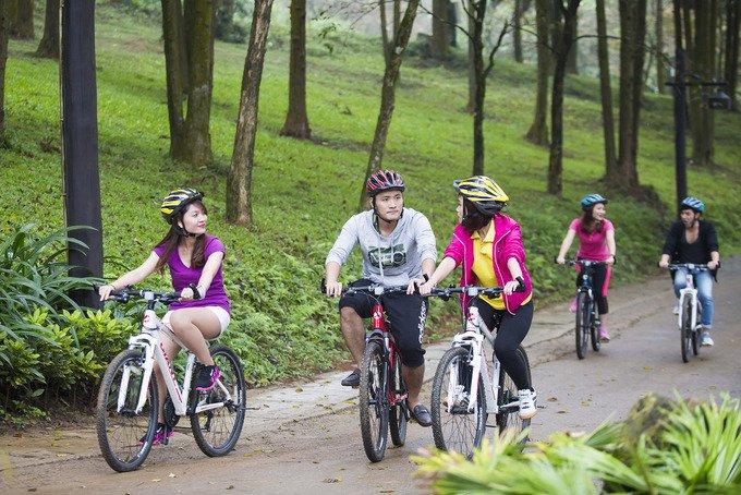 Du khách cũng có thể đạp xe để khám phá khu rừng qua một số tuyến đường đã trải bê-tông.