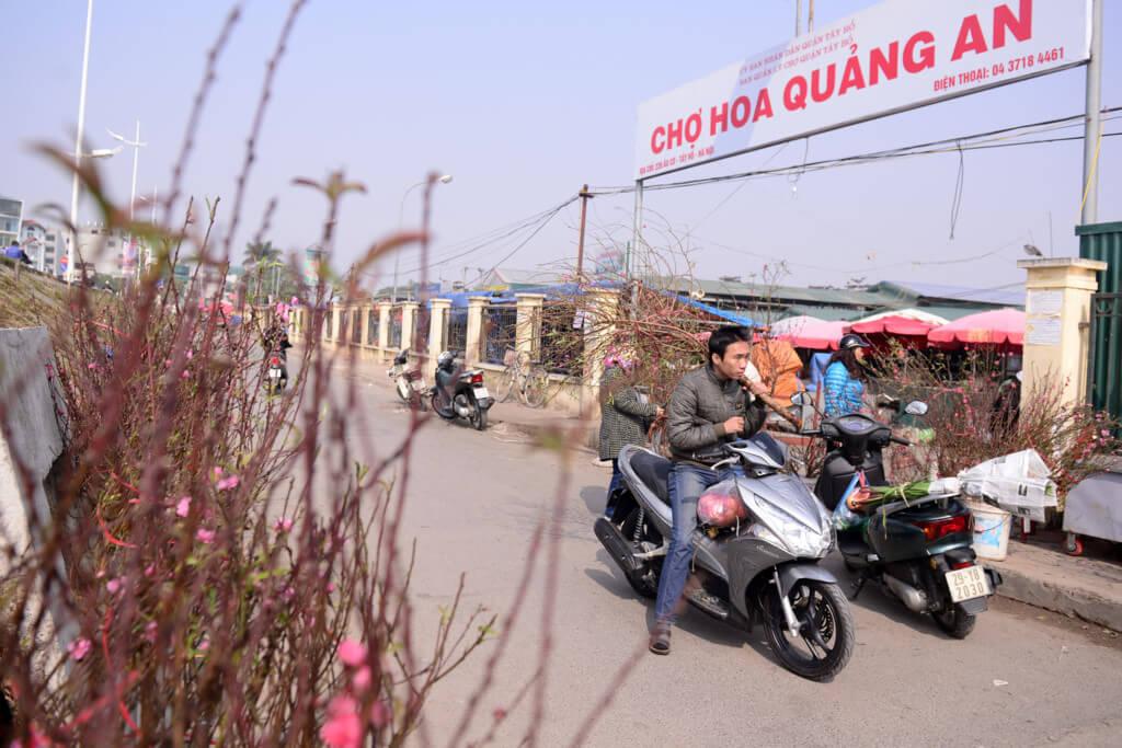 cổng chợ hoa quảng an